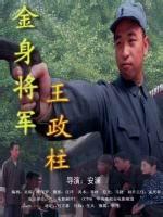 金身将军王政柱(战争片)