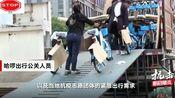 哈啰出行在武汉投放单车被约谈 回应:为满足医务人员出行