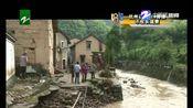 浦江:强降雨引发山洪 村庄被淹及时救援(2019年7月17日)