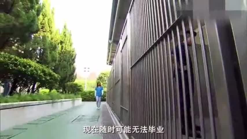 看警官如何教一只警犬装死