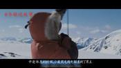 5南极大冒险