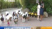 """彭丽媛与米歇尔共同为赴美大熊猫命名""""贝贝"""" 新闻报道 20150926—在线播放—优酷网,视频高清在线观看"""