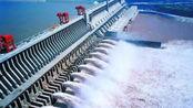 三峡大坝蓄水量那么多,里面生长的鱼怎么办?今天算长见识了!