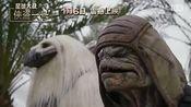 《星球大战外传:侠盗一号》星际生物特辑