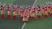 全国广场舞大赛重庆赛区潼南专场二等奖作品——站在草原望北京