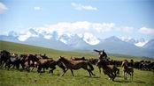 两牧民放牧,突然一匹马踢出一个铜制的圆章子,从此这里不安宁了