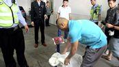 活久见!商铺天花板掉下40斤大蟒蛇,警察市民一起上才制服…
