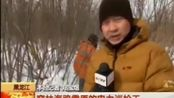 2月19日 16点新闻 黑龙江 穿林海跨雪原的电力巡检工