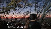 JOYCE.SEOUL VLOG 03|吃网红早饭|南山塔