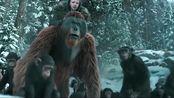 猩球崛起-终极之战超清预告