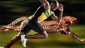 世界飞人博尔特百米9.58秒,这个速度在动物界,位居第几名?