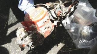 埃航坠毁客机黑匣子已找到!由工作人员带回检测