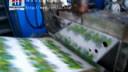 纸塑淋膜机试机视频