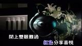 周传雄-寂寞沙洲冷【MV唱片版】