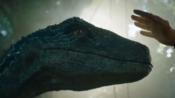 台前幕后大揭秘!《侏罗纪世界2》首映:岛屿被炸,小蓝遭攻击!