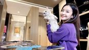 赖雨濛在家逗猫很可爱,这只猫很乖啊