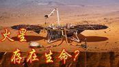 火星上存在生命?科学家再次发现,火星陨石有微生物活动痕迹!