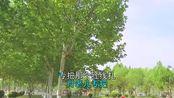 赵本山的一首《咱们屯里的人》,老歌,真心很好听
