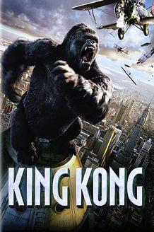 金刚 2005版