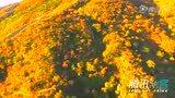 假装未入冬:全球唯美秋景航拍