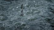 2017首届中国广告影片金狮奖 | 最佳摄影奖:华为 HUAWEI MateS