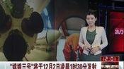 """""""嫦娥三号""""将于12月2日凌晨1时30分发射"""