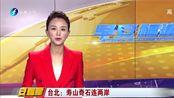 台北:寿山奇石连两岸