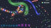 贪吃蛇大作战:对战1000米彩虹大蛇,蛇蛇争霸