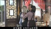 京华烟云:素云话糙理不糙,荪亚娶了姚木兰养着曹丽华,还要养狗