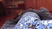 中医养生:良好的睡眠可以有效的缓解高考带来的压力