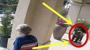 """家门口惊现""""不速之客"""",两位老人毫不知情,画面难以置信!"""