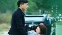 《我们的爱》1-38集大结局全集剧情 靳东 靳东潘虹童蕾王芷璇