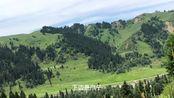 《新疆是个好地方》第24集 美丽的库尔德宁