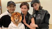 林志颖一家在蔡依林演唱会偶遇林志玲,陈若仪和林志玲同框像姐妹