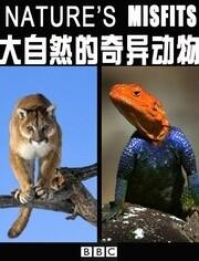 BBC:大自然的奇异动物