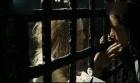 加勒比海盗2:凯拉·奈特莉盛世美颜cut