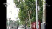 [新闻直播间]北京 中心城区道路停车改革 7月1日起施行 取消人工收费