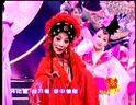 《春节戏曲晚会大全》之2004年9