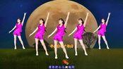 晨练广场舞DJ版《情醉天地间》动感时尚现代舞 红袖演唱
