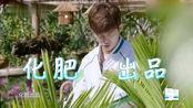 哈哈农夫:王源一听没零食急了,金瀚和董力去卖甘蔗,好心酸!