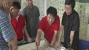 【书法百强榜-2014候选人-张旭光-428-赵梅阳艺术平台】精彩点评
