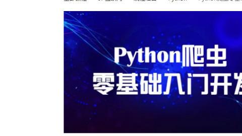 python爬虫源码视频教学完整精讲搜教程爬虫,结合数据存储,网页展示的web全栈项目