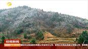 张家界:满山遍野雾凇景观,部分景点关闭游道除冰