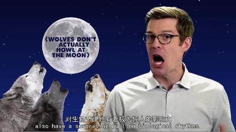 人有手表,动物有月光