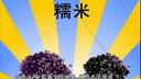 绿豆粥的做法大全,海参粥的做法大全 www.xiaochi6.com