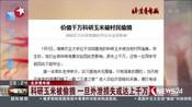 北京青年报:科研玉米被偷摘  一旦外泄损失或达上千万