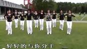 碎心石广场舞教学分解动作慢动作来www.genwoxue.tk跟我学—我的点播单—在线播放—优酷网,视频高清在线观看