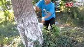 中国健身达人大赛:杜晓帆帅气跑酷