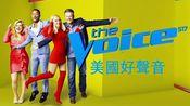 【中文字幕】The Voice U.S. 好声音 第17季第25集