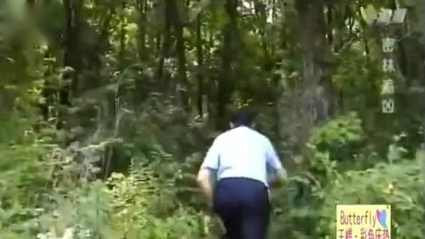 追捕 密林追凶